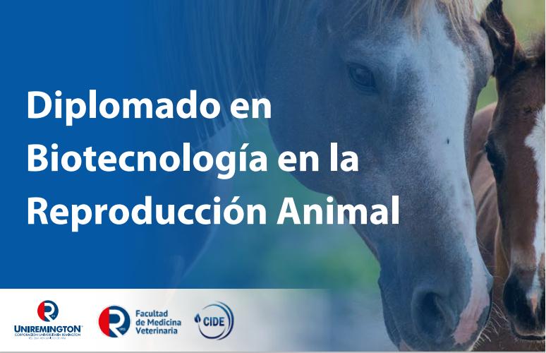 Diplomado en Biotecnología en la Reproducción Animal